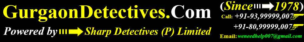 gurgaon detectives logo